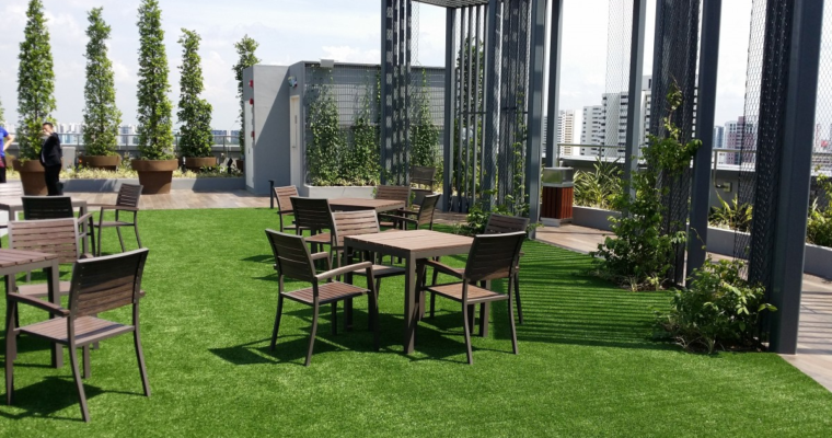 Rooftop Horticulture: 5 Factors You Must Consider Before Starting a Rooftop Garden