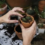 How Gardening Boosts your Health and Well-Being