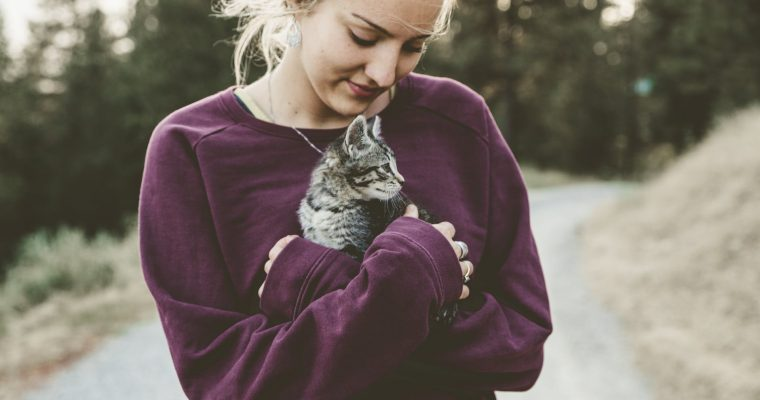 The Essential Vaccines to Protect Your Cat