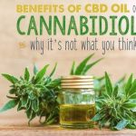 How to Take CBD Oils