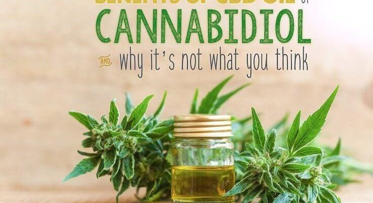 BENEFITS OF USING KW CBD OIL