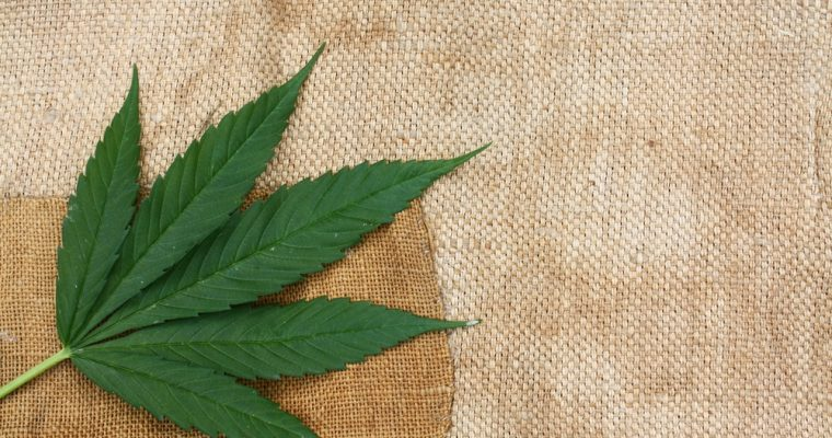 What Are CBD Patches And How Do They Work?