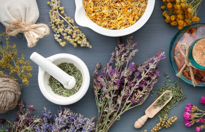 8 Herbs That Boost Your Health