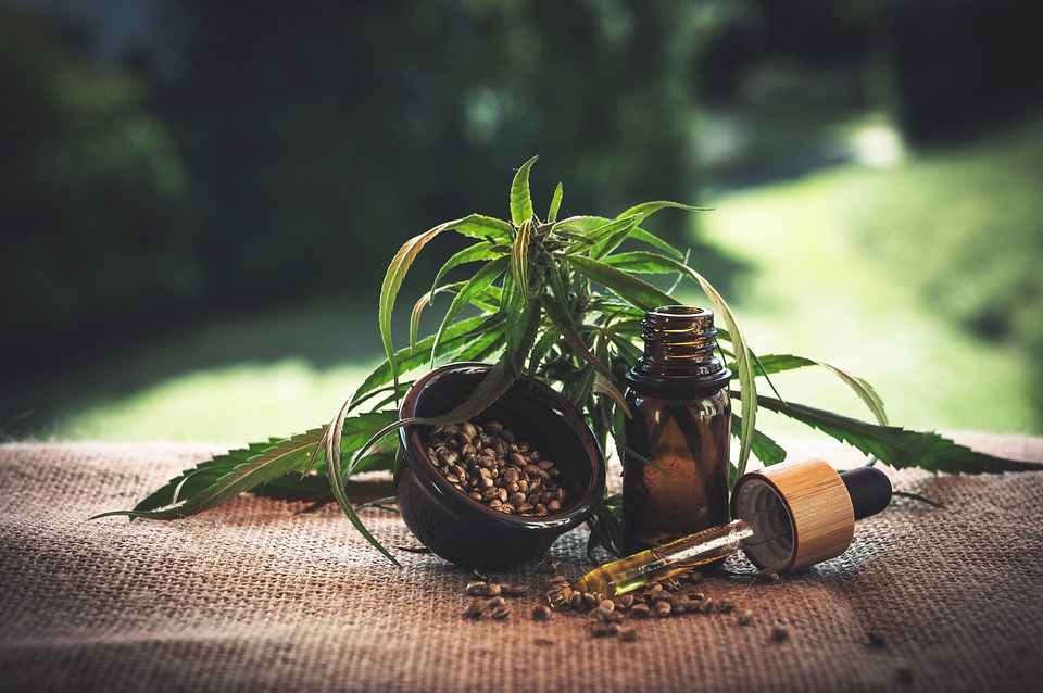 What You Need to Know Before You Start Using CBD