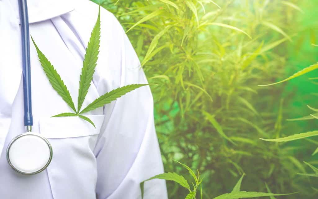 Symtomax: Leading the Field in Medical Cannabis Production and Distribution in Europe