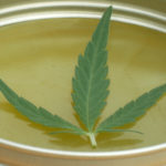 benefits of cbd ointment
