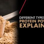 types of protein powder