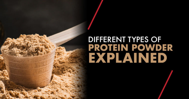What Are the Types of Protein Powder?